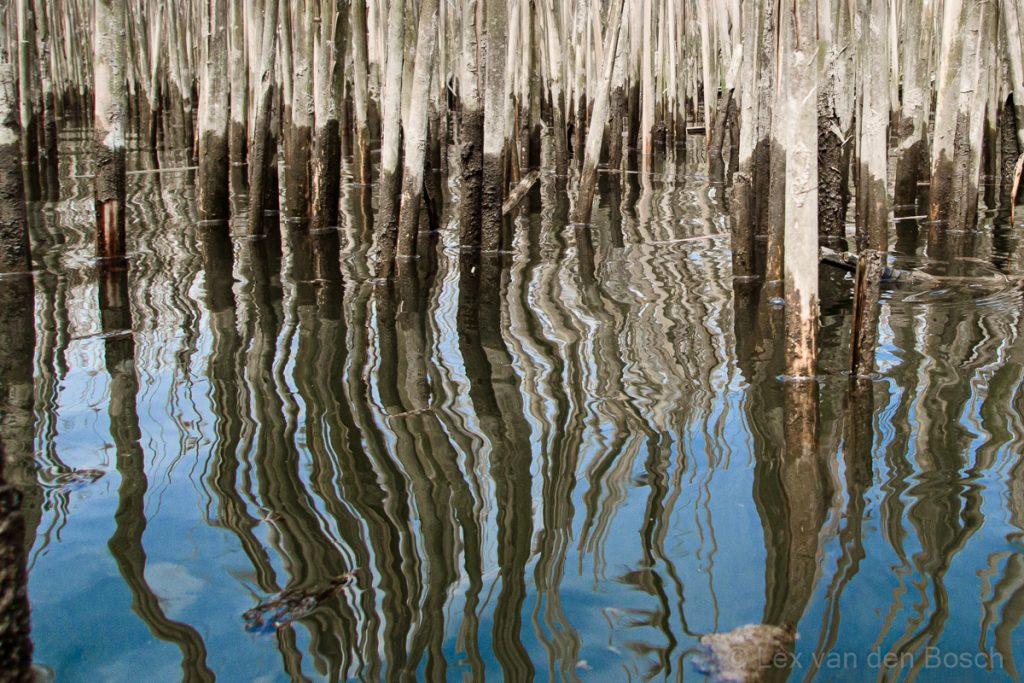 Spiegelingen op het water zijn prachtig in beeld te brengen met de camera